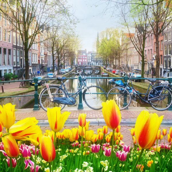 Amsterdam, The Netherlands_br_Tulips & Bicyles.jpg